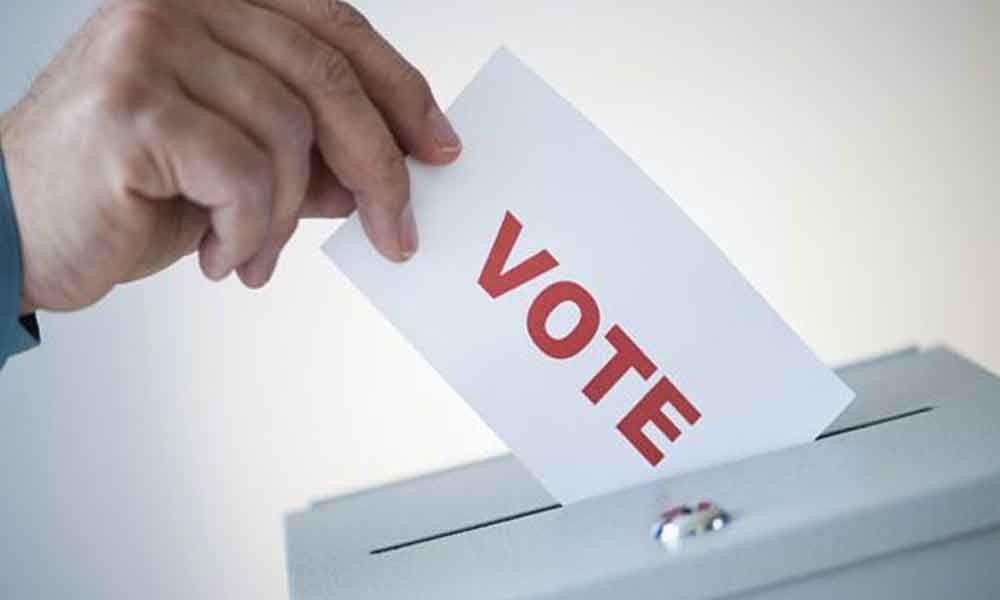 ap muncipal elections