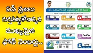 AP govt Help line numbers