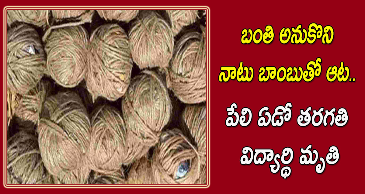 Bomb in kurnool