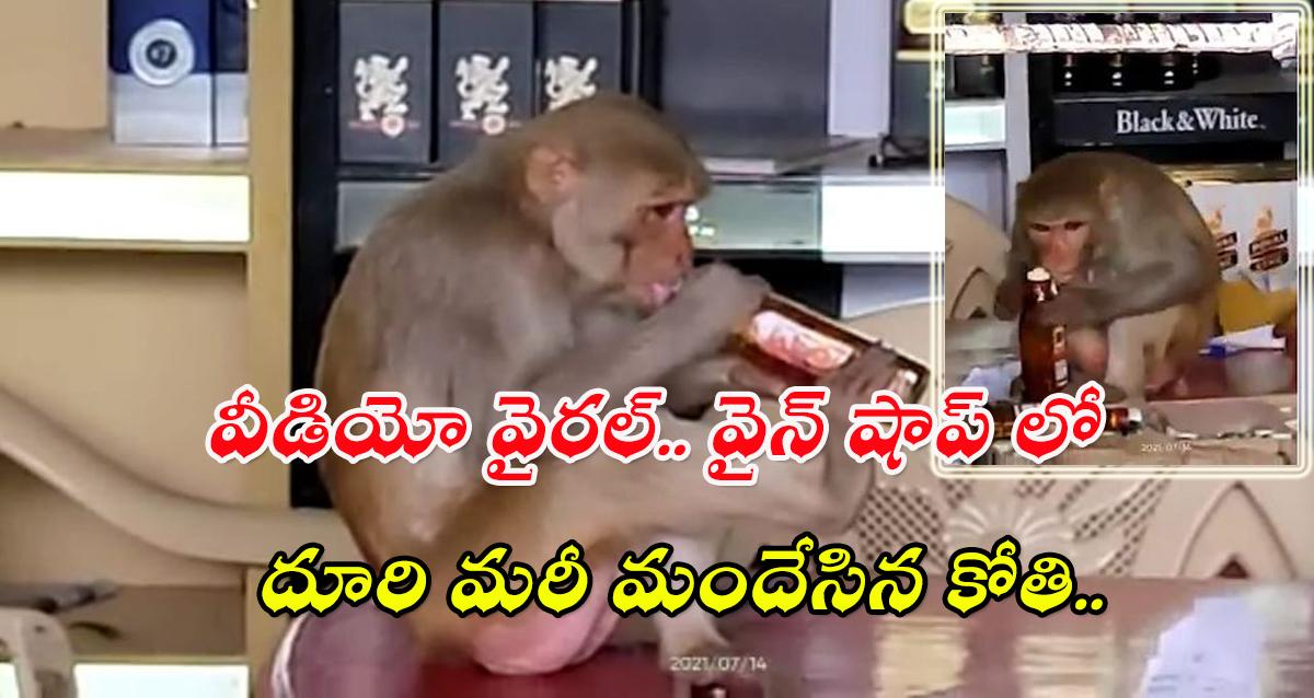 Monkey Drunk Whiskey