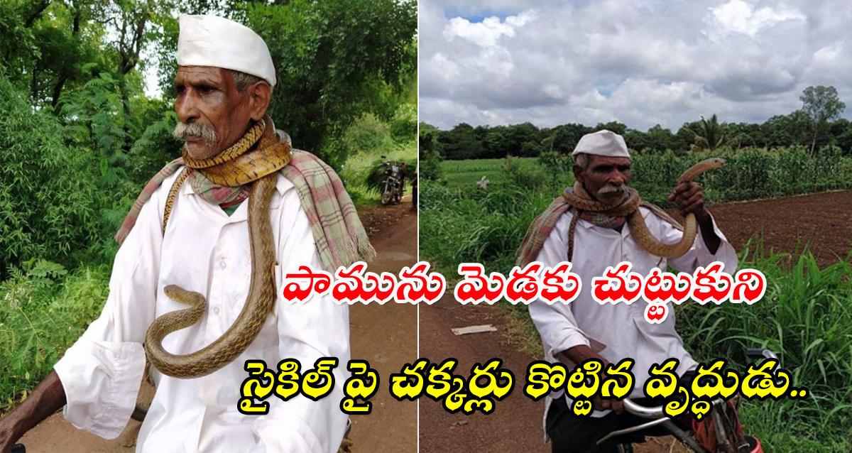 karnataka man snake around his neck