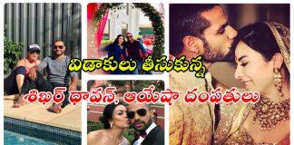 Shikhar Dhawan Divorce